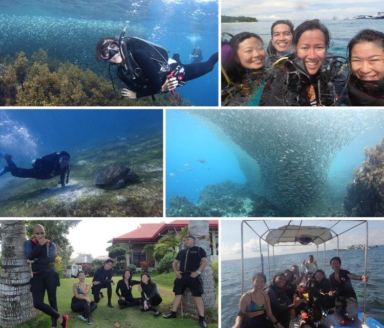 Bohol Nov 2016